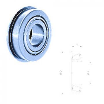 Rodamiento L29002/L29001 Fersa